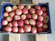 Продаем Яблоки из Польшы