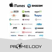 PROMELODY - сервис,  предоставляющий возможность продавать свою музыку